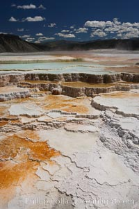 Image 13632, New Blue Spring and its travertine terraces, part of the Mammoth Hot Springs complex. Mammoth Hot Springs, Yellowstone National Park, Wyoming, USA