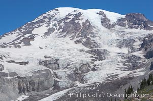 Nisqually Glacier, viewed from the Skyline Trail, summer, Paradise Meadows, Mount Rainier National Park, Washington