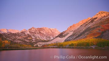 North Lake lit by alpenglow before sunrise, a three frame panorama, with groves of yellow and orange aspen trees on the side of Paiute Peak. Bishop Creek Canyon, Sierra Nevada Mountains, Bishop, California, USA, natural history stock photograph, photo id 23324