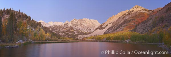 North Lake lit by alpenglow before sunrise, a three frame panorama, with groves of yellow and orange aspen trees on the side of Paiute Peak. Bishop Creek Canyon, Sierra Nevada Mountains, California, USA, natural history stock photograph, photo id 23336