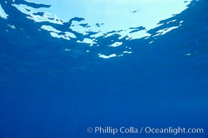 Ocean surface, Guadalupe Island (Isla Guadalupe)