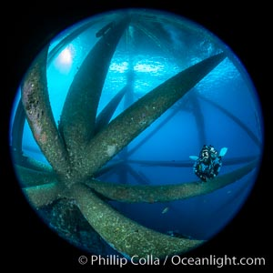 Oil Rig Ellen and Elly, Underwater Structure. Long Beach, California, USA, natural history stock photograph, photo id 34659
