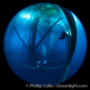 Oil Rig Ellen and Elly, Underwater Structure. Long Beach, California, USA, natural history stock photograph, photo id 34673