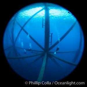 Oil Rig Ellen and Elly, Underwater Structure. Long Beach, California, USA, natural history stock photograph, photo id 34674