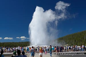 A crowd enjoys watching Old Faithful geyser at peak eruption, Upper Geyser Basin, Yellowstone National Park, Wyoming