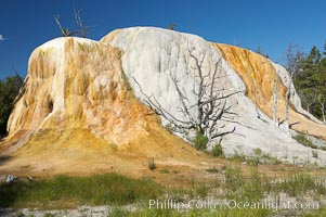 Orange Spring Mound.  Many years of mineral deposition has built up Orange Spring Mound, part of the Mammoth Hot Springs complex. Yellowstone National Park, Wyoming, USA, natural history stock photograph, photo id 13613