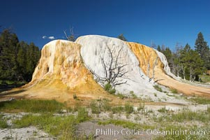 Orange Spring Mound.  Many years of mineral deposition has built up Orange Spring Mound, part of the Mammoth Hot Springs complex, Yellowstone National Park, Wyoming