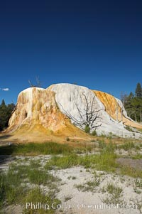 Orange Spring Mound.  Many years of mineral deposition has built up Orange Spring Mound, part of the Mammoth Hot Springs complex. Mammoth Hot Springs, Yellowstone National Park, Wyoming, USA, natural history stock photograph, photo id 13615