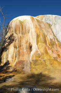 Orange Spring Mound.  Many years of mineral deposition has built up Orange Spring Mound, part of the Mammoth Hot Springs complex. Yellowstone National Park, Wyoming, USA, natural history stock photograph, photo id 13616