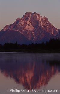 Mount Moran in the Teton Range is reflected at sunrise in a sidewater of the Snake River at Oxbow Bend, summer. Grand Teton National Park, Wyoming, USA, natural history stock photograph, photo id 07390