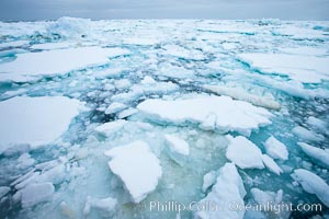 Pack ice and brash ice fills the Weddell Sea, near the Antarctic Peninsula.  This pack ice is a combination of broken pieces of icebergs, sea ice that has formed on the ocean. Weddell Sea, Southern Ocean, natural history stock photograph, photo id 24790