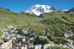 Image 13881, Mount Rainier rises above Edith Creek. Paradise Meadows, Mount Rainier National Park, Washington, USA