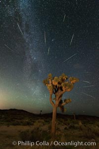 Perseid Meteor Shower over Joshua Tree National Park, Aug 13, 2014