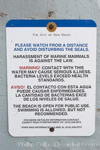 A sign warns visitors to stay away from the harbor seals at Childrens Pool in La Jolla, California while videotaping those who approach the seals.  The La Jolla colony of harbor seals, which has formed a breeding colony at a small but popular beach near San Diego, is at the center of considerable controversy.  While harbor seals are protected from harassment by the Marine Mammal Protection Act and other legislation, local interests would like to see the seals leave so that people can resume using the beach. La Jolla, California, USA, Phoca vitulina richardsi, natural history stock photograph, photo id 12713