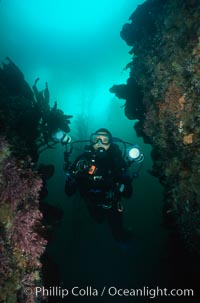 Photographer and reef, Monterey, California