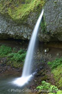 Ponytail Falls, where Horsetail Creeks drops 100 feet over an overhang below which hikers can walk. Columbia River Gorge National Scenic Area, Oregon, USA, natural history stock photograph, photo id 19342