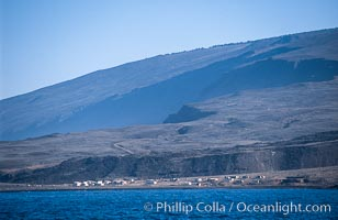 Western Anchorage, Guadalupe Island (Isla Guadalupe)