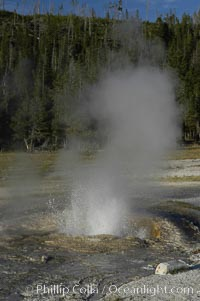 Pump Geyser, Upper Geyser Basin, Yellowstone National Park, Wyoming