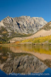 Aspen trees in fall, change in color to yellow, orange and red, reflected in the calm waters of North Lake. Bishop Creek Canyon, Sierra Nevada Mountains, Bishop, California, USA, Populus tremuloides, natural history stock photograph, photo id 23357