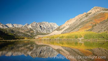Aspen trees in fall, change in color to yellow, orange and red, reflected in the calm waters of North Lake, Paiute Peak rising to the right. Bishop Creek Canyon, Sierra Nevada Mountains, Bishop, California, USA, Populus tremuloides, natural history stock photograph, photo id 23366