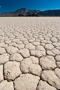 Racetrack Playa, an ancient lake now dried and covered with dessicated mud. Death Valley National Park, California, USA, natural history stock photograph, photo id 26385