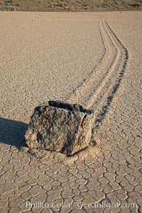 Sailing stone on the Death Valley Racetrack playa.  The sliding rocks, or sailing stones, move across the mud flats of the Racetrack Playa, leaving trails behind in the mud.  The explanation for their movement is not known with certainty, but many believe wind pushes the rocks over wet and perhaps icy mud in winter. Racetrack Playa, Death Valley National Park, California, USA, natural history stock photograph, photo id 25329