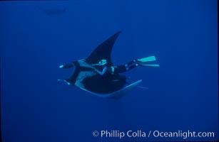 Manta ray and freediver. San Benedicto Island (Islas Revillagigedos), Baja California, Mexico, Manta birostris, natural history stock photograph, photo id 02459