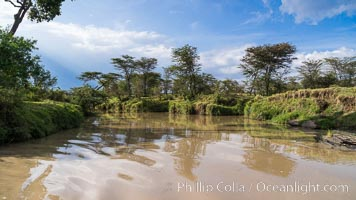 River, trees and sky, Maasai Mara, Kenya. Olare Orok Conservancy, Kenya, natural history stock photograph, photo id 30022