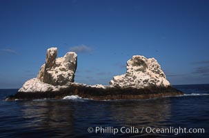 Roca Partida, a small remote seamount in the Revillagigedos., natural history stock photograph, photo id 05619