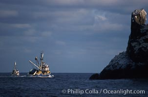 Illegal fishing at Roca Partida, Revillagigedos