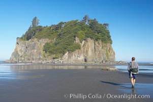 A visitor walks along Ruby Beach at low tide and admires its famous seastack, early morning, Olympic National Park, Washington