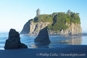 Ruby Beach and its famous seastack, early morning. Ruby Beach, Olympic National Park, Washington, USA, natural history stock photograph, photo id 13816