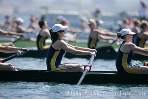 Cal (UC Berkeley) women en route to a second place finish in the Jessop-Whittier Cup final, 2007 San Diego Crew Classic. Mission Bay, California, USA, natural history stock photograph, photo id 18657