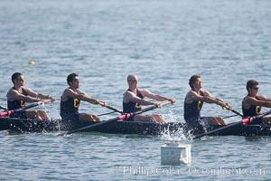 Cal (UC Berkeley) men's collegiate novice crew on their way to winning the Derek Guelker Memorial Cup, 2007 San Diego Crew Classic. Mission Bay, San Diego, California, USA, natural history stock photograph, photo id 18659