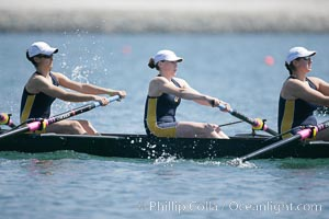 Cal (UC Berkeley) women en route to a second place finish in the Jessop-Whittier Cup final, 2007 San Diego Crew Classic. Mission Bay, San Diego, California, USA, natural history stock photograph, photo id 18700