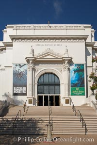 The San Diego Museum of Natural History, Balboa Park, San Diego.  The San Diego Natural History Museum is the place to find dinosaur bones and get a close up look at insects, birds and organic matter that make our outside world so interesting. Renovated in 2001, a new wing has doubled the museums original 65,000 square feet of floor space to about 150,000 square feet