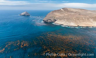 Santa Barbara Island, aerial photograph. California, USA, natural history stock photograph, photo id 29359