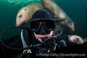 Selfie with Steller sea lion underwater, Norris Rocks, Hornby Island, British Columbia, Canada. Hornby Island, British Columbia, Canada, Eumetopias jubatus, natural history stock photograph, photo id 32797