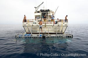Shark cages in water, astern of M/V Horizon.  Large, strong aluminum cages protect divers while they are in the water viewing sharks, Guadalupe Island (Isla Guadalupe)