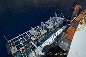 Shark cages in water, astern of M/V Horizon.  Large, strong aluminum cages protect divers while they are in the water viewing sharks. Guadalupe Island (Isla Guadalupe), Baja California, Mexico, natural history stock photograph, photo id 21370
