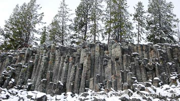 Sheepeater Cliffs, an example of columnar jointing in basalt due to shrinkage during cooling. Yellowstone National Park, Wyoming, USA, natural history stock photograph, photo id 19794