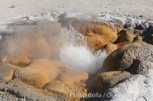Shell Spring (Shell Geyser) erupts almost continuously.   The geysers opening resembles the two halves of a bivalve seashell, hence its name.  Biscuit Basin. Biscuit Basin, Yellowstone National Park, Wyoming, USA, natural history stock photograph, photo id 13499