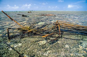 Wreck of F/V Jin Shiang Fa, Rose Atoll National Wildlife Sanctuary