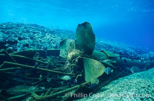 Image 00810, Propellor and debris, wreck of F/V Jin Shiang Fa. Rose Atoll National Wildlife Sanctuary, American Samoa, USA, Phillip Colla, all rights reserved worldwide. Keywords: american samoa, animal, creature, environment, landscape, marine national monuments, national wildlife refuges, nature, oceans, outdoors, outside, pacific, rose atoll, rose atoll marine national monument, rose atoll national wildlife refuge, rose atoll national wildlife sanctuary, samoa, scene, scenery, scenic, seascape, underwater, underwater landscape, usa.
