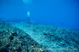 Keel scar caused by F/V Jin Shiang Fa to coralline algae reef, Rose Atoll National Wildlife Sanctuary