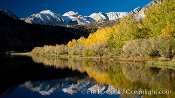 Sierra Nevada mountains and aspen trees, fall colors reflected in the still waters of North Lake. Bishop Creek Canyon Sierra Nevada Mountains, California, USA, Populus tremuloides, natural history stock photograph, photo id 26061