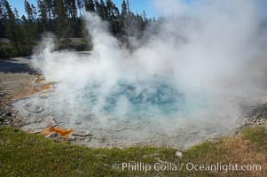 Silex Spring gets its name from the silica which is prevalent in the surrounding volcanic rocks and which is dissolved by the superheated water of Silex Spring.  Silex is latin for silica.  Lower Geyser Basin, Yellowstone National Park, Wyoming