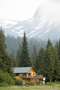 Silver Salmon Creek Lodge, spruce trees and Chigmit Range, Lake Clark National Park, Alaska