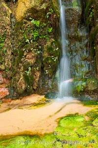 Small waterfall amidst a grotto of ferns, moss and algae. This small oasis exists year round as a result of water seeping from the red sandstone walls of Zion Canyon, Zion National Park, Utah