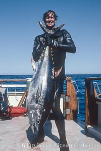 Scott Campbell and yellowfin tuna, Guadalupe Island (Isla Guadalupe)
